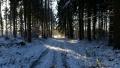 Winter1415005