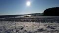 Winter1415010