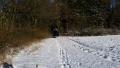 Winter1415011