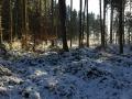 Winter1415M002