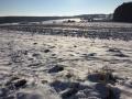 Winter1415M007