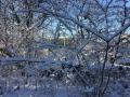 Winter1415M008