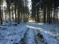 Winter1415M009