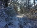 Winter1415M010