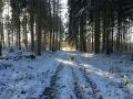 Winter1415M011