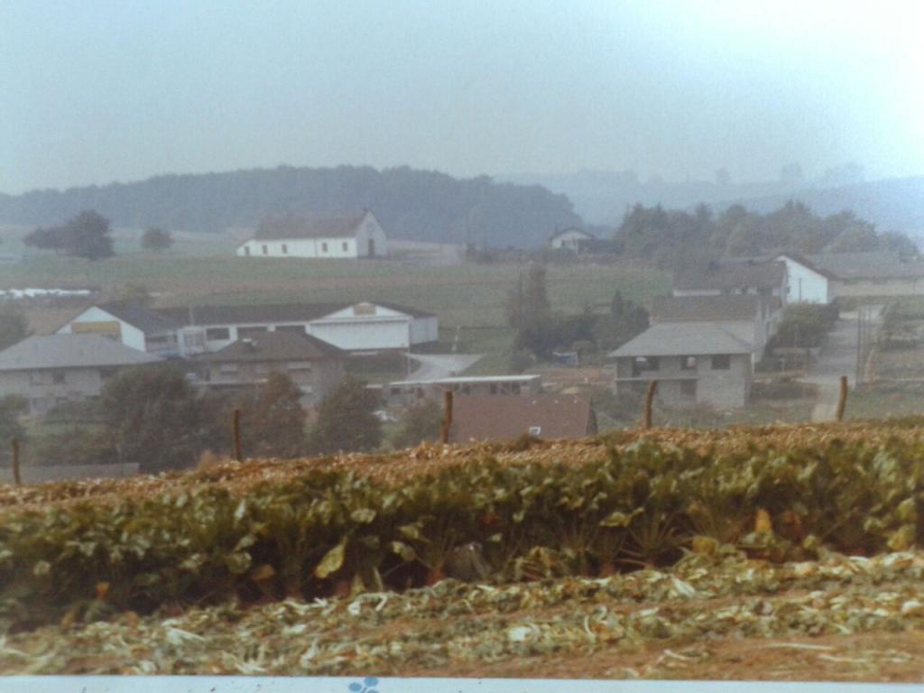 Blick über die Neugasse und das Firmengellände von CHW zur Turnhalle. Bild: Aus dem Privatbesitz von Kornelia Stein